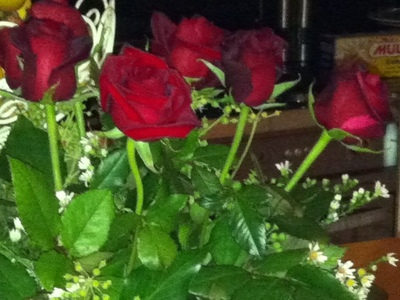Roses, Bouquet, Love, Romance, Relationship, Valentines Day