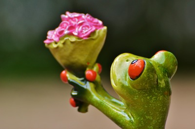 Frog holding bunch of flowers