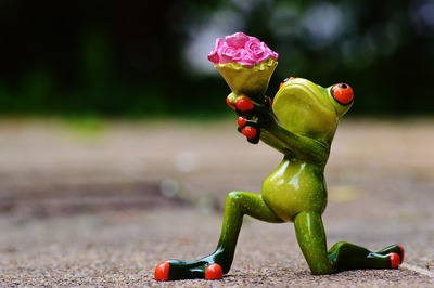 Frog holding flowers